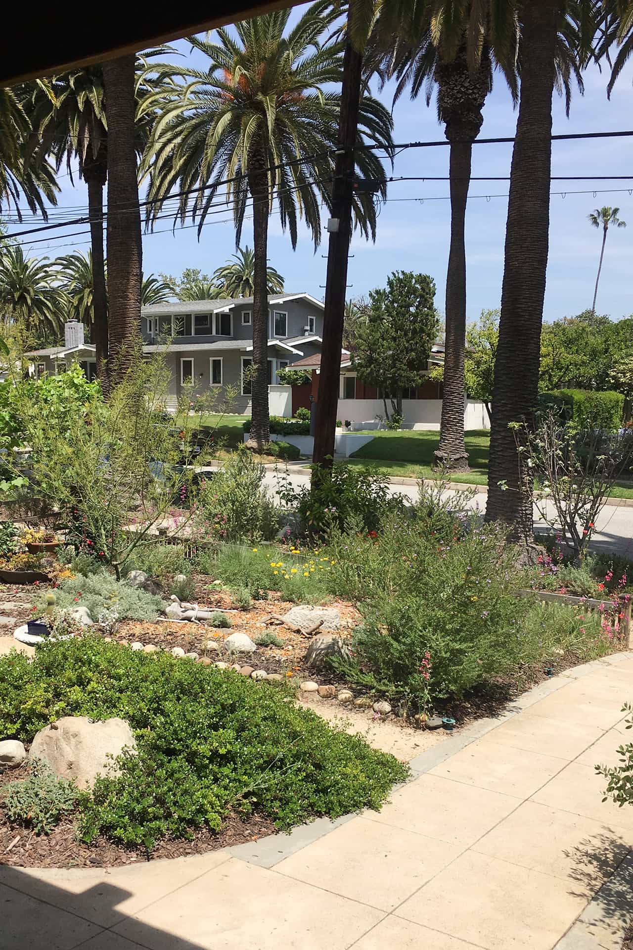photo of garden 29 in South Pasadena